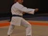 marseille-karate6