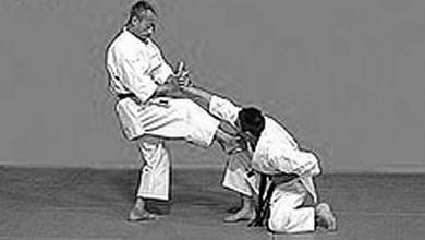 Stage karate Nakahashi Sensei